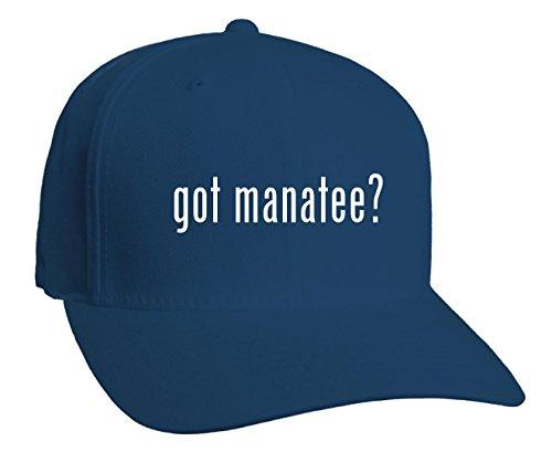 ManateeGray